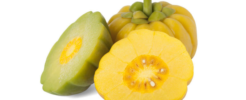 Garcinia Cambogia attention a la pilule miracle