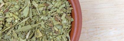 les-feuilles-de-sene-pour-maigrir